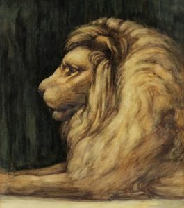 smith-v-lion-drawing-3