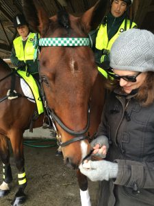 Cat and Frank the horse at the Canterbury A&P Show, 2014