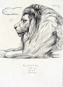 Detail of: Vivian Smith (b.1883, d.1946), Untitled (Lion), December 1911, graphite on paper, X2014/593.